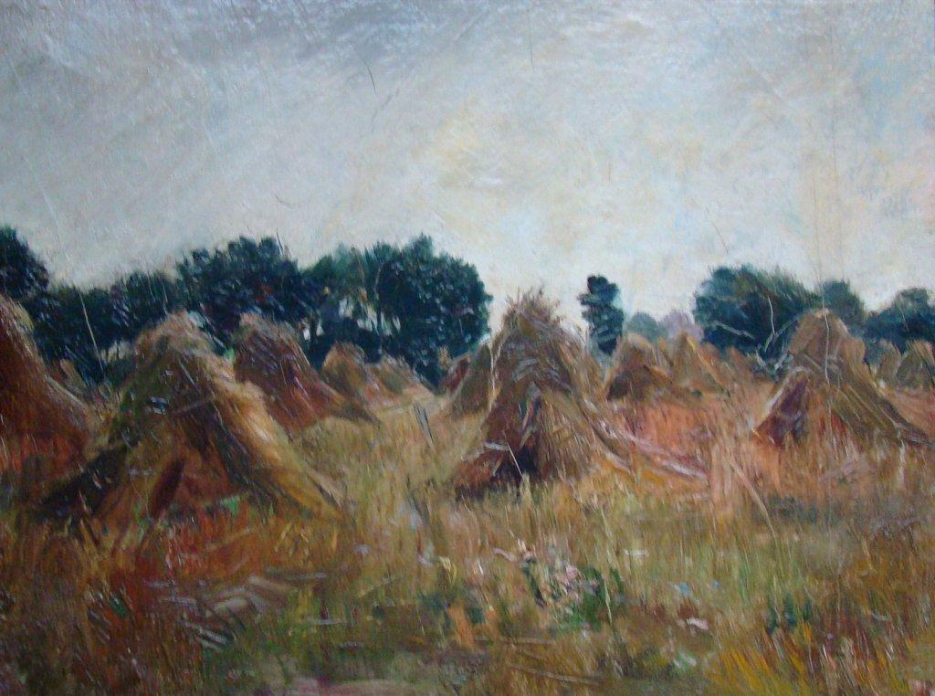 Landschap zomer Willem Bzn